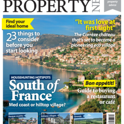 IPS in French Property News